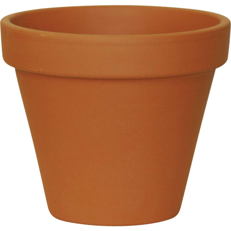 Ceramo 3-3/4 In. H. x 4-1/2 In. Dia. Terracotta Clay Standard Flower Pot Image 1